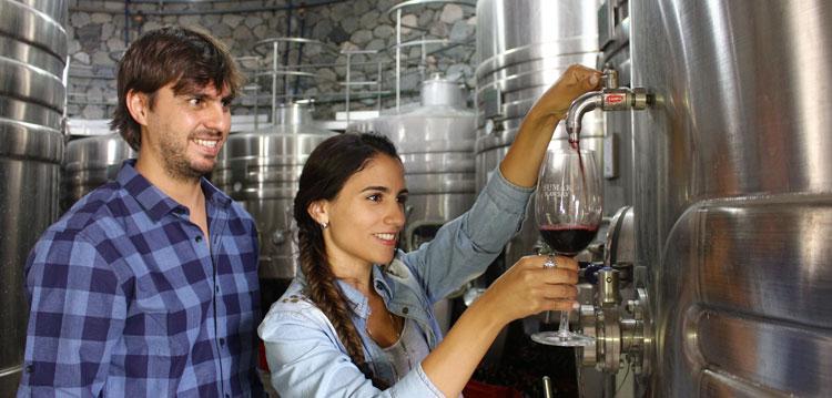 Turistas disfrutan la propuesta enoturística y los excelentes vinos en una bodega tucumana